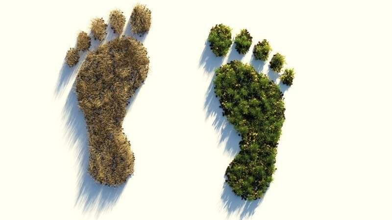 A Climate Friendly Diet