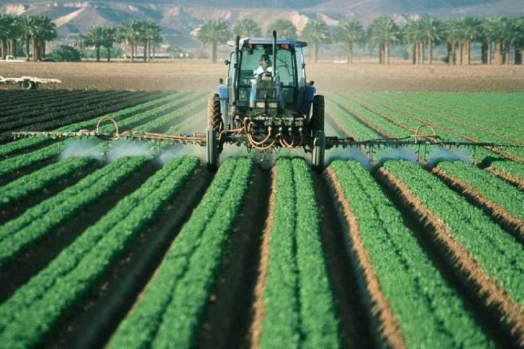 pesticide residues in food crops
